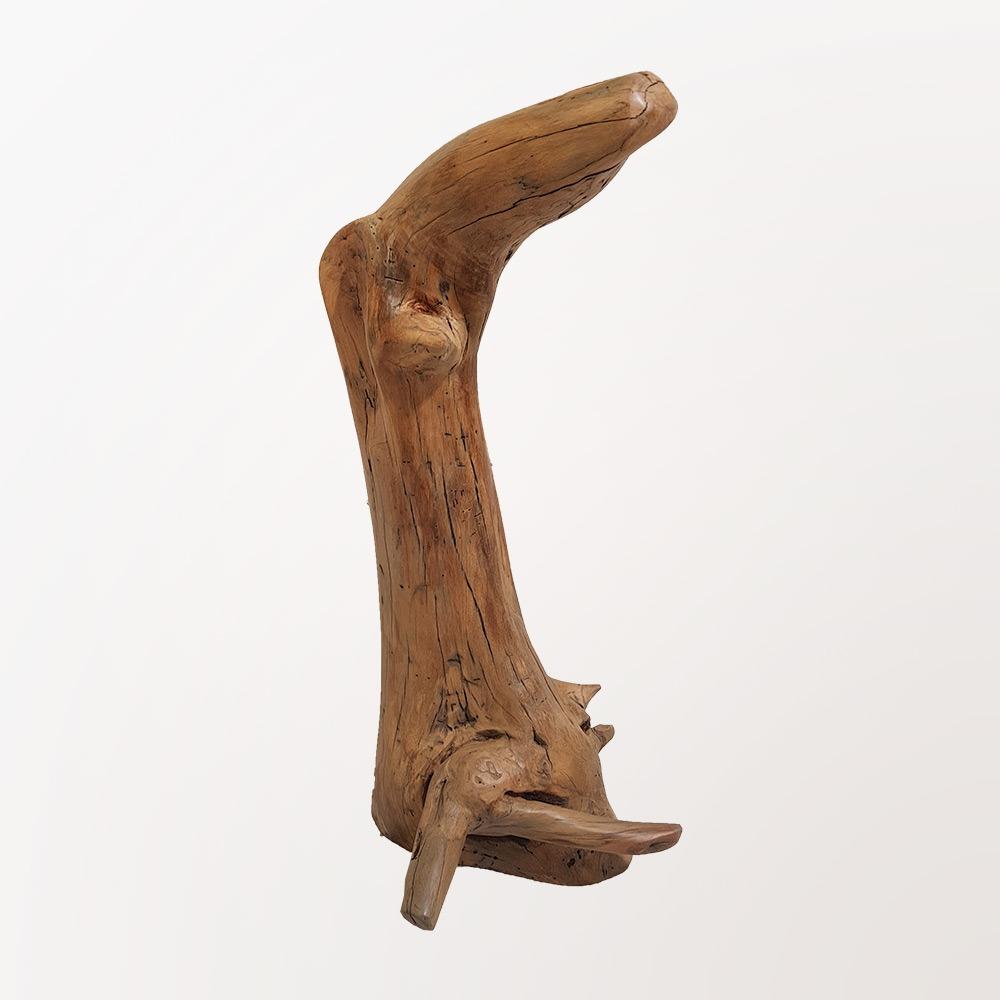 Escultura Lontra
