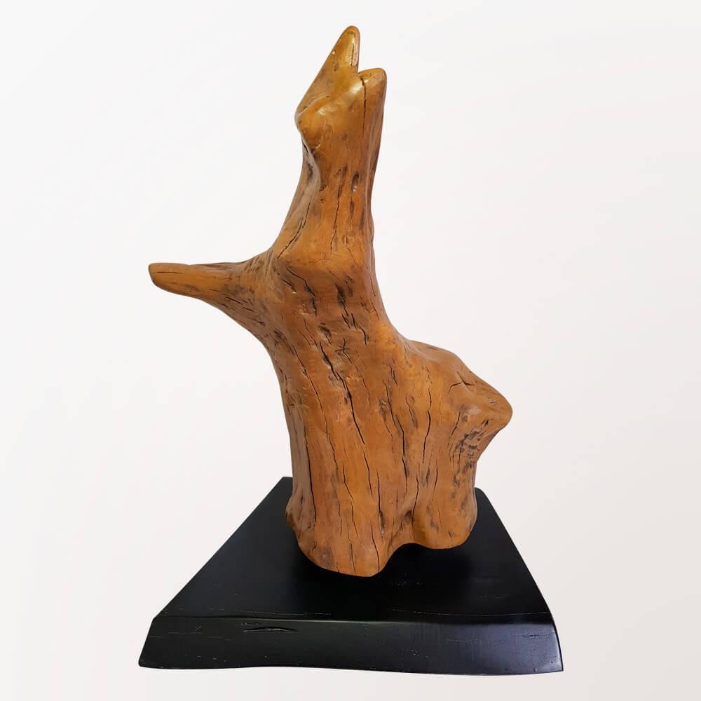 Escultura Aru
