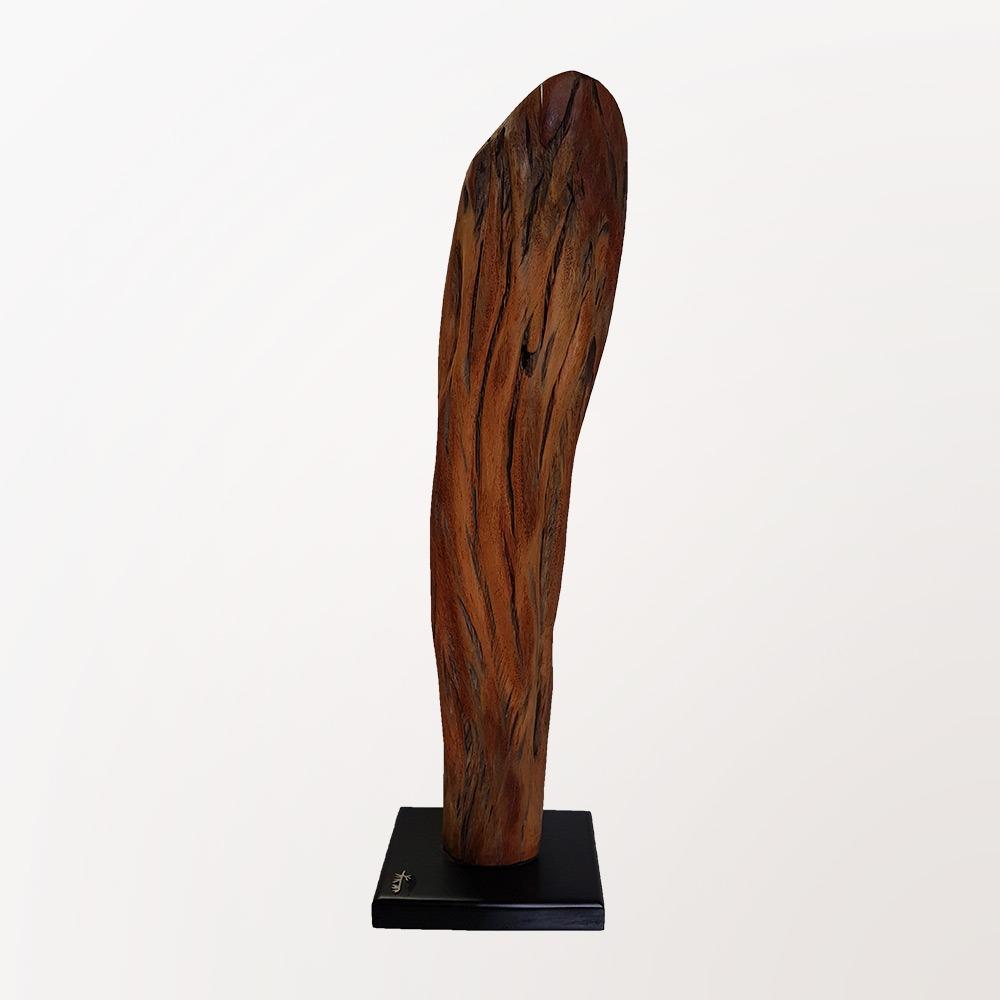 Escultura Cerne