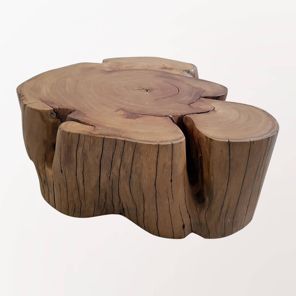 Coffee Table - Elephant