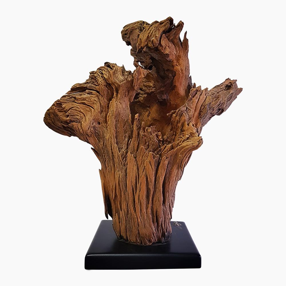 Bromeliad Sculpture